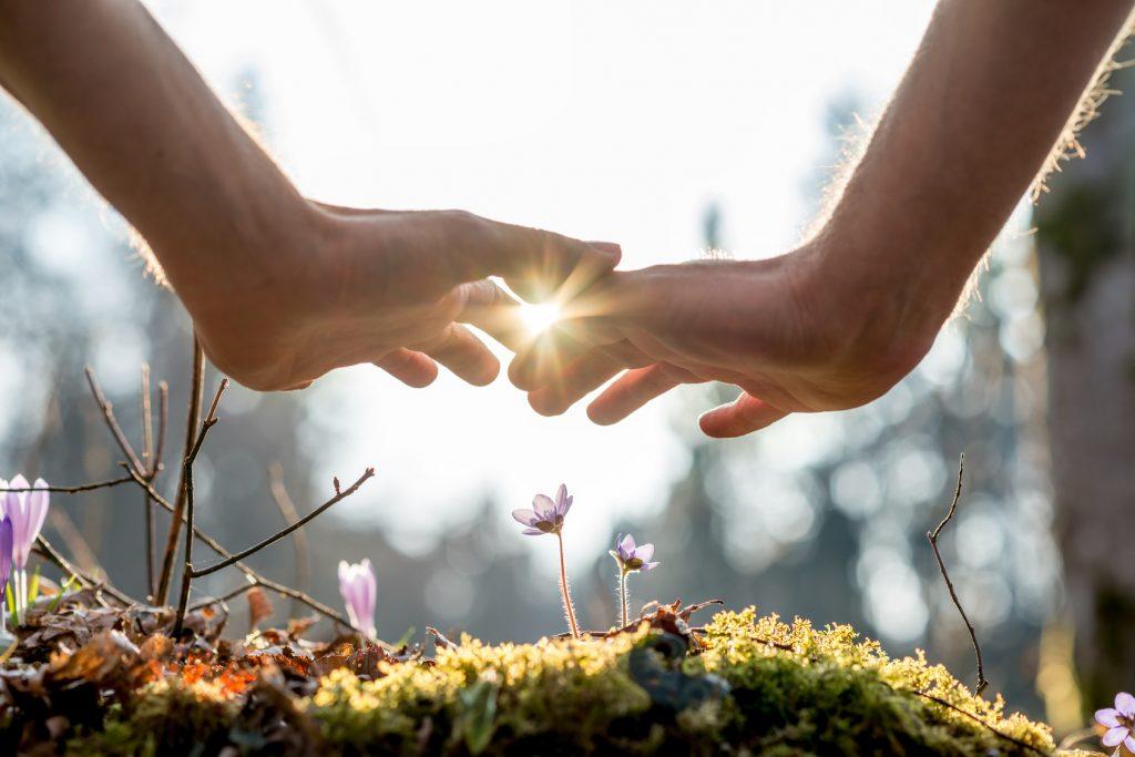 Ayurveda Behandlung & Therapie für die innere Harmonie - Körper, Geist & Seele in Einklang bringen und die Selbstheilungskräfte aktivieren im Energietreffpunkt Bad Zurzach